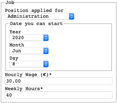 A snippet from the accessible job application form